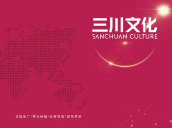 广西三川文化发展有限公司电子画册