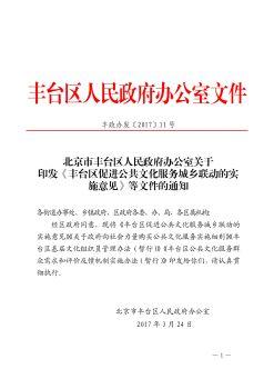 丰台区购买公共文化服务细则宣传画册