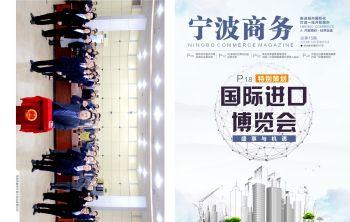 宁波商务2018.12电子宣传册