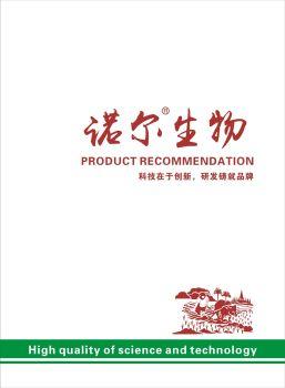 诺尔画册PDF 电子书制作软件