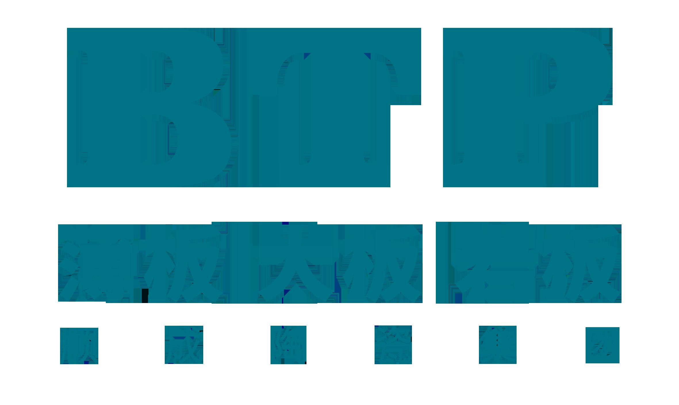 BTP陶瓷 电子书制作软件