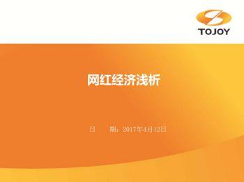 网红经济分析PPT(天九合一公司策划部)