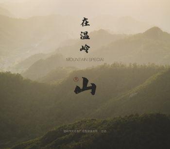 在温岭·见山宣传画册 电子书制作软件