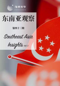 东南亚观察-第43期