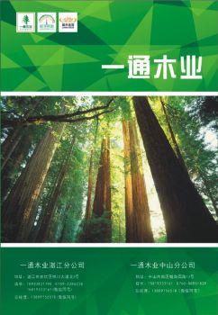 2020年一通木业新色卡样板电子画册