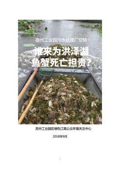 宿州工业园污水处理厂空转 ! 谁来为洪泽湖鱼蟹死亡担责?电子画册