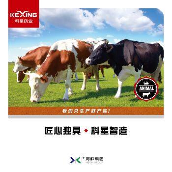 科星药业牛药产品宣传手册