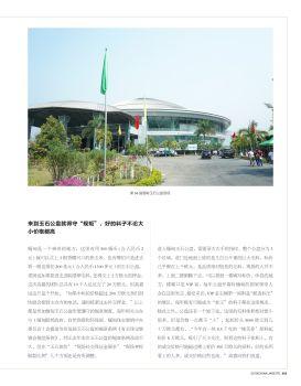 中国翡翠杂志缅甸翡翠