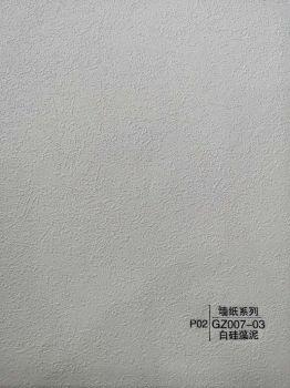 2-GZ007-03白硅藻泥宣传画册