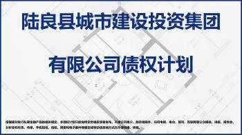 陆良城投债权计划推介书