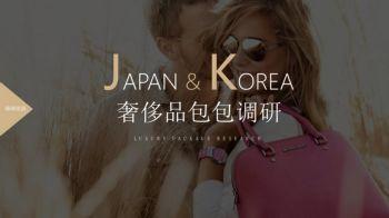 韩国&日本奢侈品包调研电子画册