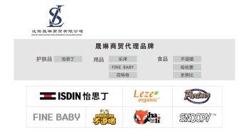 沈阳晟琳商贸代理产品电子画册