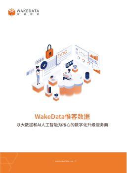 WakeData惟客数据 电子书制作软件