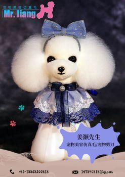 姜灏先生宠物美容用品电子目录 电子书制作软件