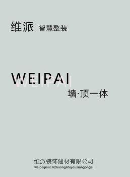 维派VIPAI智慧整体背景图库电子画册