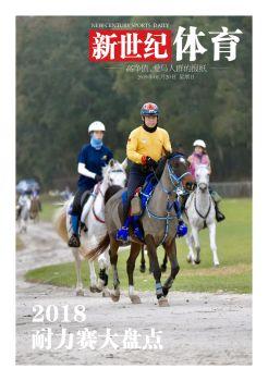 《新世纪体育》报改版试刊第55期 电子杂志制作软件