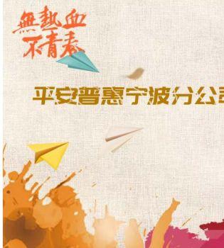 平安普惠宁波分公司线下咨询优秀分享电子画册