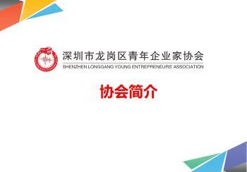 龙岗区青年企业家协会简介电子书