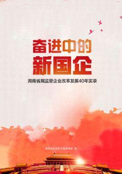 《奋进中的新国企——省属国有企业改革开放40年实录》电子书