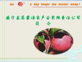 威宁县乌蒙绿色产业有限责任公司简介 电子书制作软件