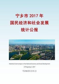 宁乡市2017年国民经济和社会发展统计公报,3D数字期刊阅读发布