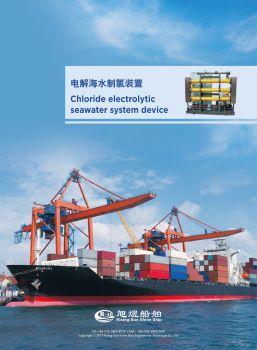 ECU-电解海水制次氯酸钠装置广告初稿电子书