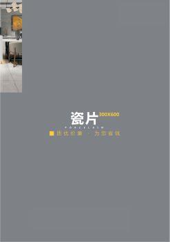 瓷片300X600,电子画册,在线样本阅读发布