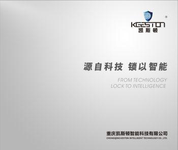 凯斯顿 电子画册 - 横版 单页 电子书制作软件