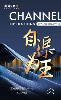 蓝光发展数字化渠道作战手册