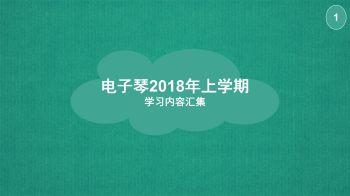 电子琴2018(上) (1).pdf  2宣传画册