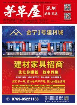《茅草屋深圳建材报》2020年6月1日电子书刊