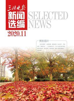 三峡晚报11月新闻选编 电子书制作软件