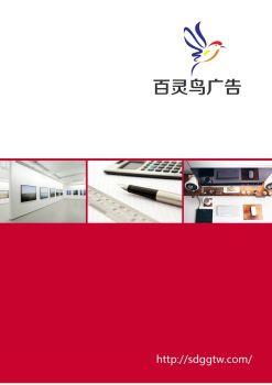 百灵鸟产品画册