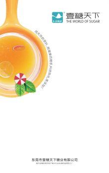 壹糖天下 ---我们定制不一样的糖浆宣传画册