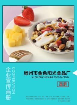 滕州市金色阳光食品厂电子画册