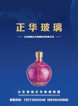 山东郓城正华玻璃科技有限公司--新品展示电子画册