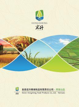 息县宏升粮食制品有限责任公司 电子杂志制作平台