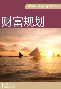 【吴先生】财富规划方案(v1.2),在线电子杂志,期刊,报刊
