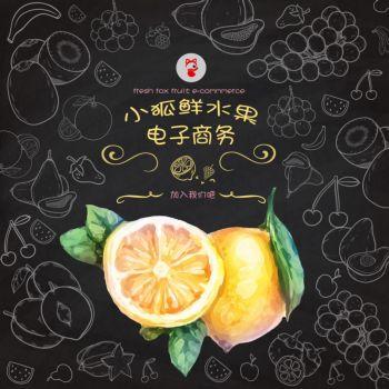 小狐仙水果电子商务宣传册
