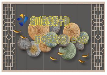 第十期 新中式背景169款电子画册