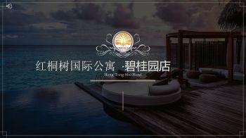 红桐树国际公寓简介PPT.pdf111电子书
