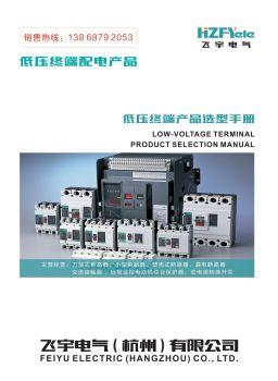 飞宇电气(杭州)有限公司-塑壳电子画册