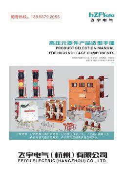 飞宇电气(杭州)有限公司-高压电子画册