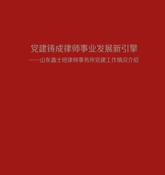 党建筑成律师事业发展新引擎电子书