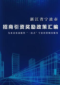 宁波市招商引资奖励政策汇编 电子书制作软件