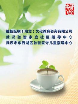 融智纵横(湖北)文化教育咨询有限公司电子画册