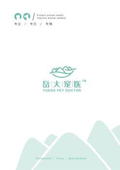 岳大宠医画册 电子书制作平台