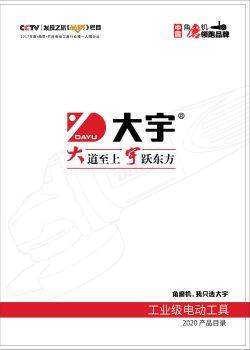 8-1 大宇电子本