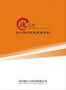 魂之力科技企业宣传册