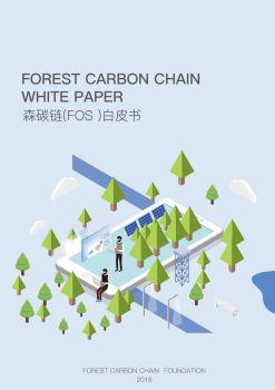 森碳链 1109 电子杂志制作平台